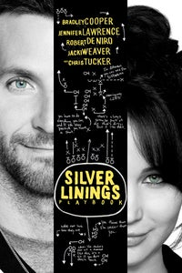 Silver Linings Playbook as Danny