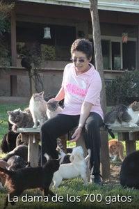 La dama de los 700 gatos