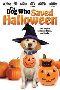 The Dog Who Saved Halloween as Stewey