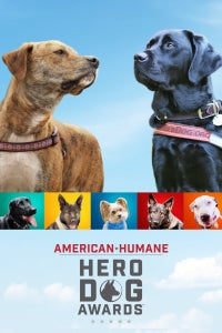 9th Annual American Humane Hero Dog Awards(R)
