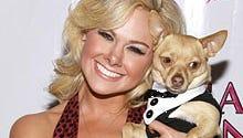 MTV Series Recasts Broadway's Legally Blonde Star