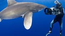 Shark Week Throws a20th-anniversary Monster Bash!