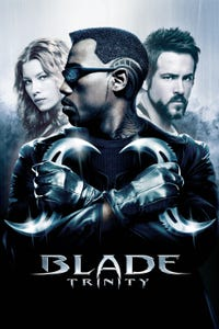 Blade: Trinity as Sommerfield