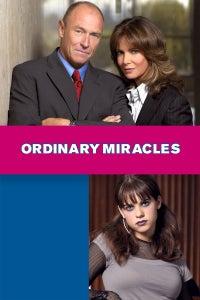 Ordinary Miracles as David Woodbury