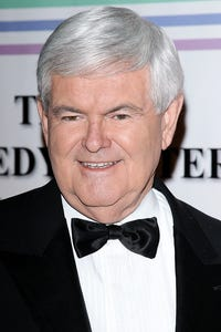 Newt Gingrich as Self