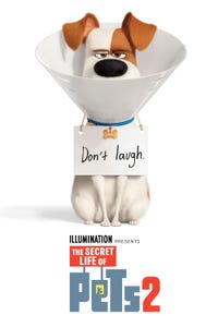 The Secret Life of Pets 2 as Max