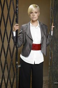 Laura Harris as Ally Graves