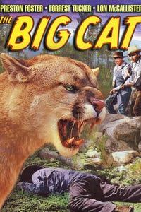 The Big Cat as Tom Eggers