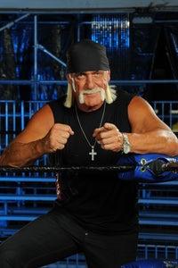 Hulk Hogan as Boomer Knight