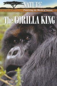 Nature: The Gorilla King as Narrator