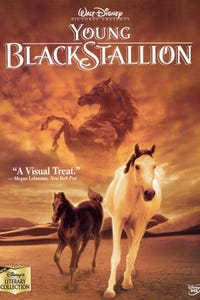 The Young Black Stallion as Neera