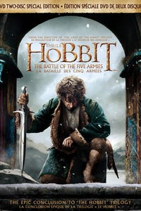 The Hobbit: The Battle of the Five Armies as Thranduil