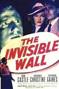 Invisible Wall as Harry Lane