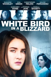 White Bird in a Blizzard as Phil